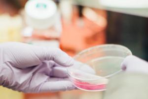 Decorative photo of person holding petri dish