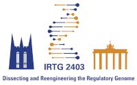 IRTG 2403