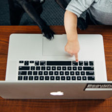 Decorative photo of baby pointing to laptop