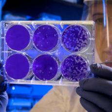 Decorative photo of scientist in lab